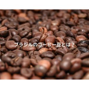ブラジルのコーヒー豆の歴史や品種とは?