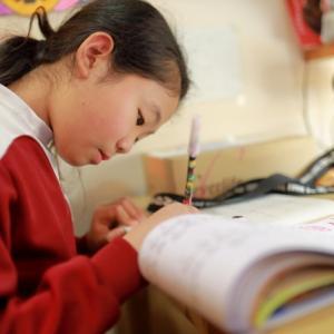 「家庭力」が子どもの学力を伸ばす!親ができることとは
