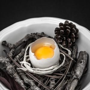 絶対に必見!初心者の英語学習/卵料理のオーダーの仕方★