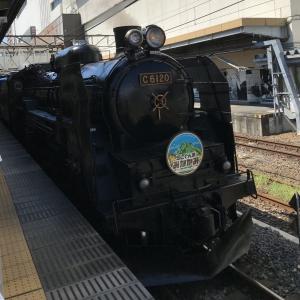 【雑記】関東・上越ローカル線の旅【帰省】