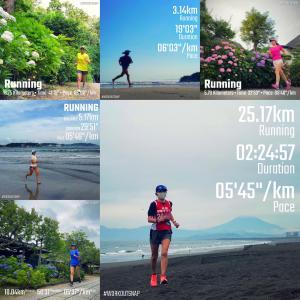 往路10km走って月例湘南マラソンに参加【週刊ラン日誌】