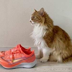 Nikeの厚底第3世代「ナイキ ズーム フライ3」【レビュー】