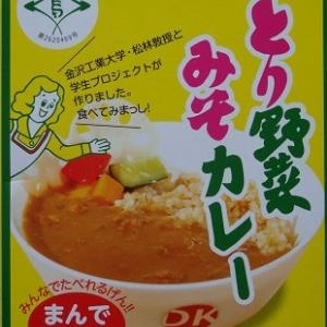 とり野菜みそカレー [1009]