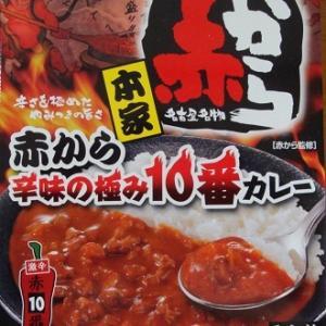 赤から 辛味の極み10番カレー [1098]