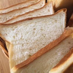我が家の定番ふわふわ食パンといきなりの大腸検査