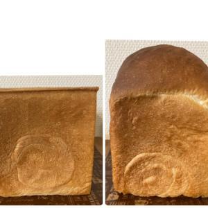 ふわふわ角食パンと山食パンレシピとトンカツの晩ご飯