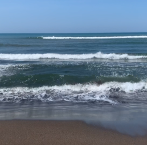海2019、公園2019、おもひで残り、の巻。