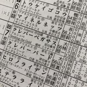 無観客競馬~21日目~