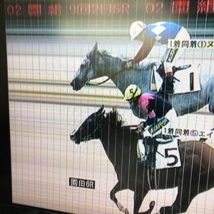園田競馬・無観客〜63日目(薄暮17日目)〜
