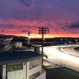 園田競馬・開催日誌 2021年5月21日 重賞級のハナブサがB1クラスを大楽勝!