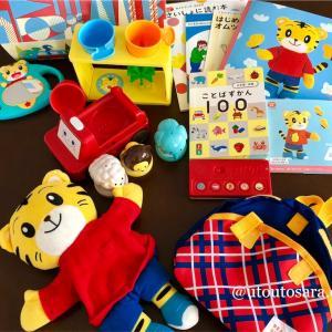 【2020年4月号レビュー】こどもちゃれんじぷち「1~2歳向け」絵本・おもちゃ・DVDセットでコスパ良し!
