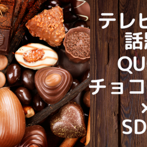 QUONチョコレート×SDGs「全国夢のチョコレートプロジェクト」