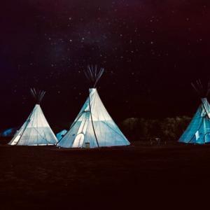 今日はキャンプごっこ。