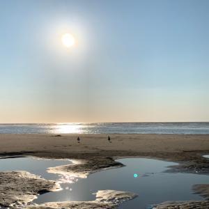 【イギリス暮らし】Ainsdale beachへ。