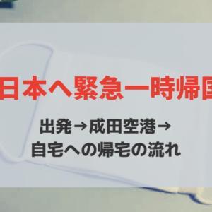 【PCR検査も受診】2020年4月にジャカルタ→成田空港→自宅へ帰った時の流れ