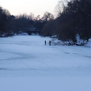 完全に凍った湖