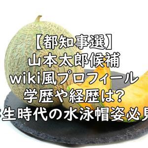 【都知事選】山本太郎の学歴(高校)や経歴などのwiki風プロフィールは?