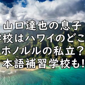 山口達也の息子の学校はハワイのどこ?私立小学校で日本語補習校も?