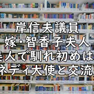岸信夫の嫁は智香子夫人で美人!馴れ初めは社会人時代で職場結婚?