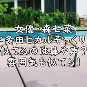 森七菜は宇多田ヒカルに似てる!鼻や声がそっくりで双子みたい?【画像&音声】