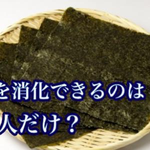 海苔を消化できるのは日本人だけ?!実際にどうなのか調べてみた。