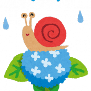 雨の日に、自動精米機にマイセンの玄米を盗られる