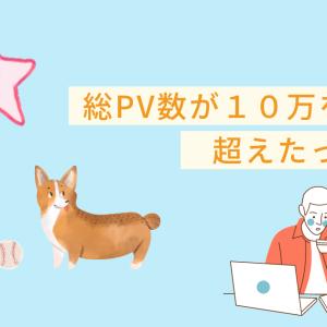 ブログのトータルのPV数が100,000PVを超えました。
