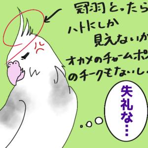 コウメの紹介