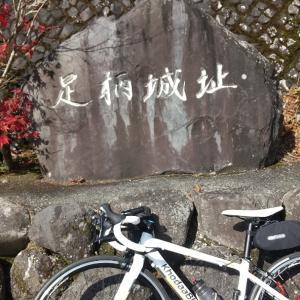 BRM1108 東京200金太郎(昼) レポ