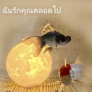 タイの空へ向かって