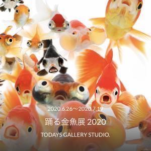 今年も「踊る金魚展」がやってきます!