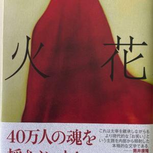 又吉直樹さんの「火花」を読む前に見つけてしまった衝撃的なもの