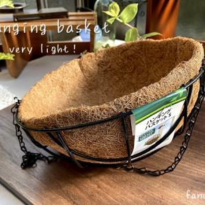 植物も軽量化したい│ハンキングバスケットで植物を育てる
