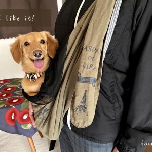 愛犬が笑った(笑)たためるリネン麻のペットスリング活用