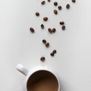 コーヒーメーカを選ぶなら全自動VS単独ミル付き どちらだ?