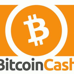 BCH/ビットコインキャッシュ仮想通貨購入取引所!特徴や仕組み・今後将来性