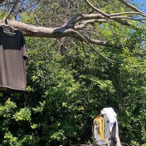 嵐山介護施設