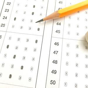 全国統一小学生テストの結果はいつ?郵送してくれる?