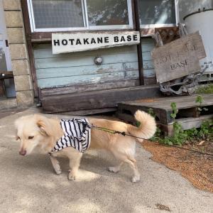 犬連れキャンプ・HOTAKANEBASE・群馬県片品村・武尊根小学校