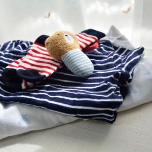 【秋の衣替えはいつ?】衣替え期のお洗濯・収納のコツ!