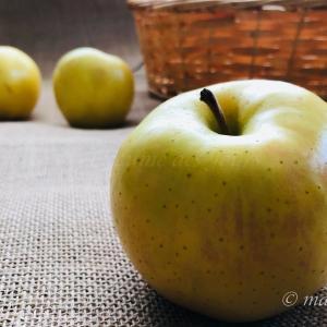 黄色いりんご 「トキ」!旬の時期は10月