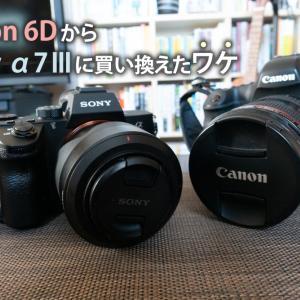 Canon 6DからSony α7Ⅲに乗り換えて1年つかってみてのメリット
