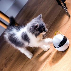 猫用スマートロボ