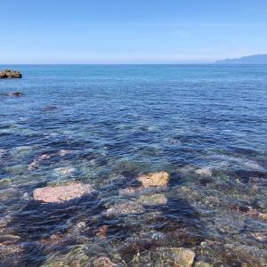 綺麗な海が待ち遠しい9月の海