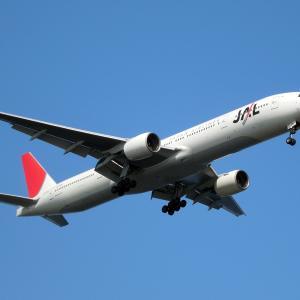 夏休みにJALでハワイ直行往復航空券を半額で買った方法