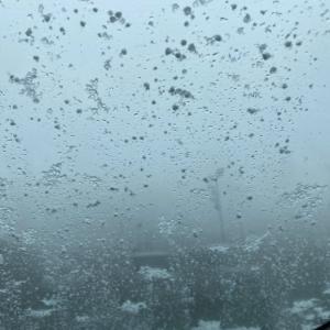 雪が降り。。
