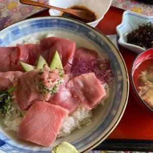 マグロ丼と海