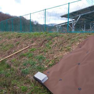 防草シートと除草剤効果の確認in京丹波