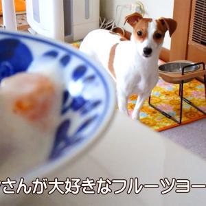今日のおやつはフルーツヨーグルト♪ 動画もあるよ!
