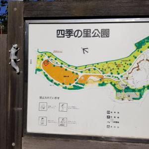 四季の里公園(守谷市)